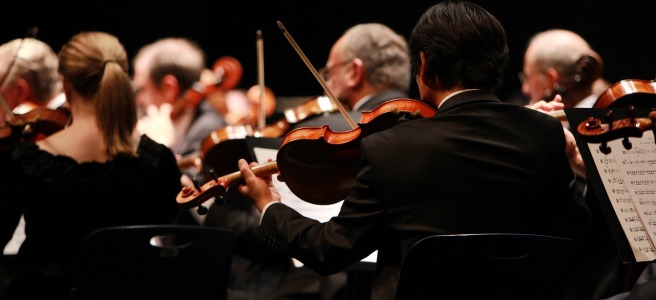 Violins in a symphony orchestra